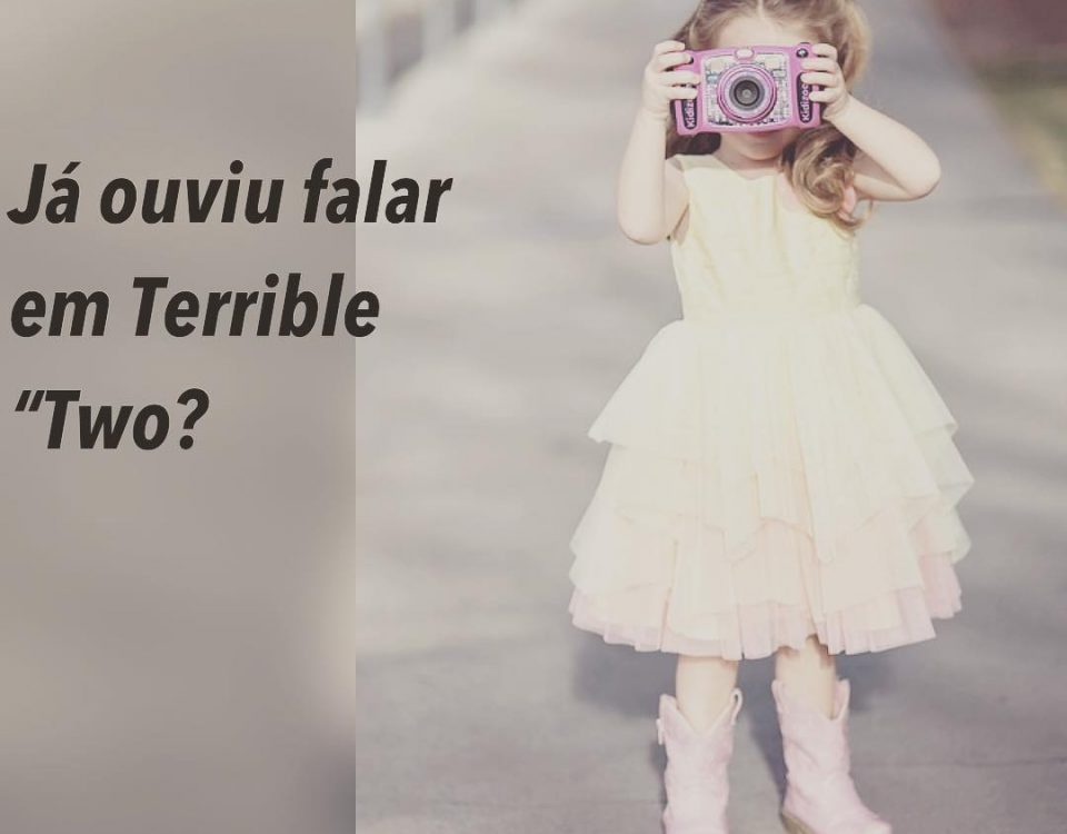 """""""Terrible Two"""" ou em português, """"Terríveis 2 anos"""". É de extrema importância par..."""